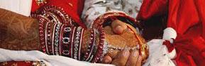 Matrimonial Reports